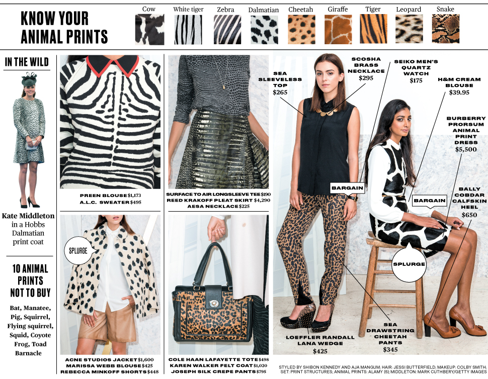 Zebra Print Shoes Outfit