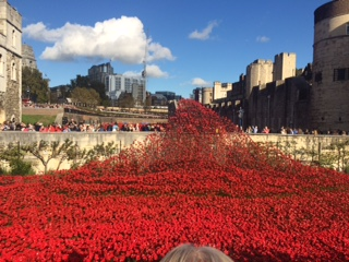 The amazing Poppies at the Tower of London